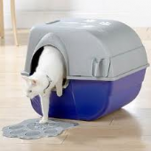 Cat Litter Trays & Toilets